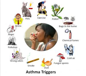Asthma trigger