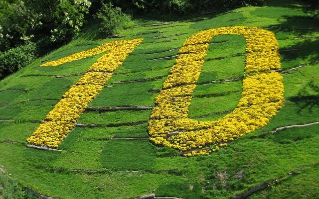 10 goldene Asthmatiker Regeln